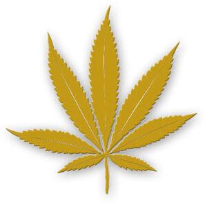 Top 200 Cannabis Lawyers